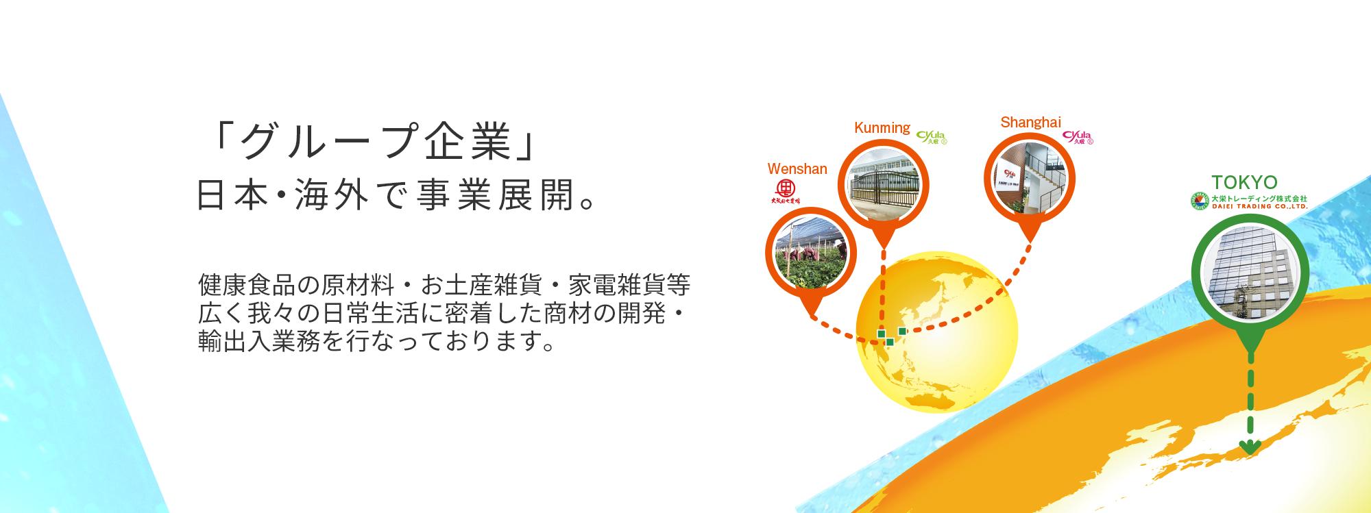 大栄トレーディング株式会社グループ企業イメージ